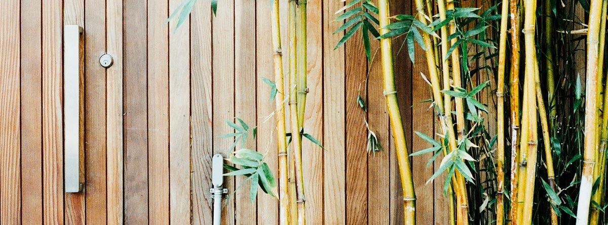 Pared de madera de bambú