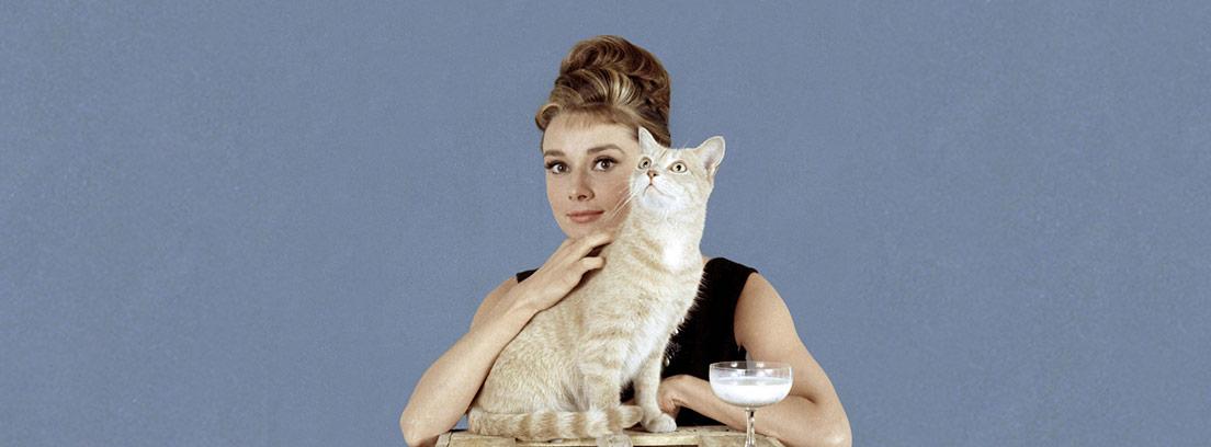 El gato Orangey junto a Audrey Hepburn