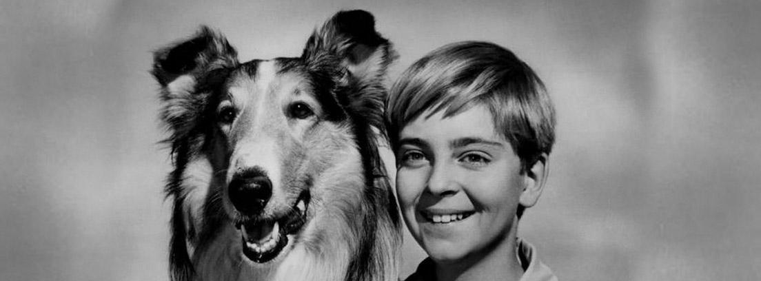 Lassie junto a Tommy Rettig en la foto publicitaria de la serie