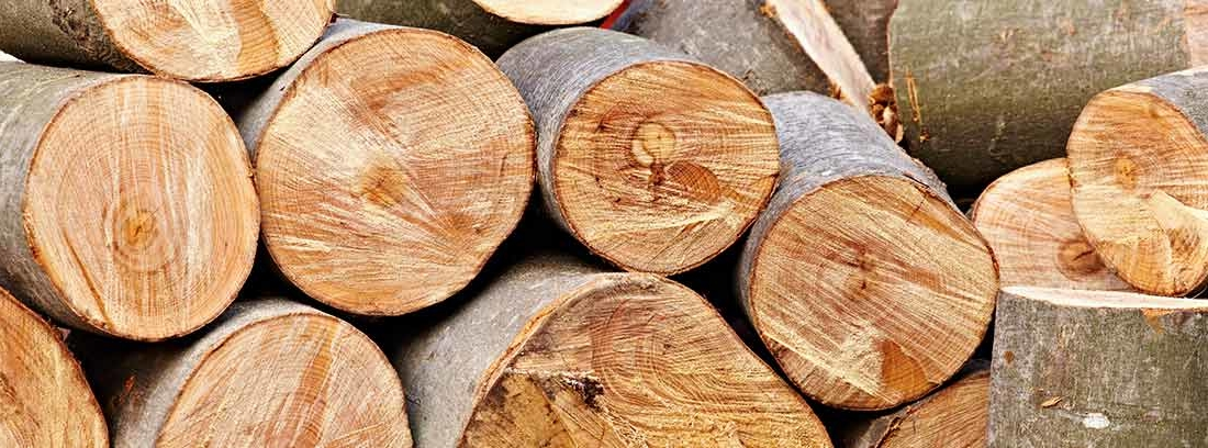 Varios troncos cortados para leña