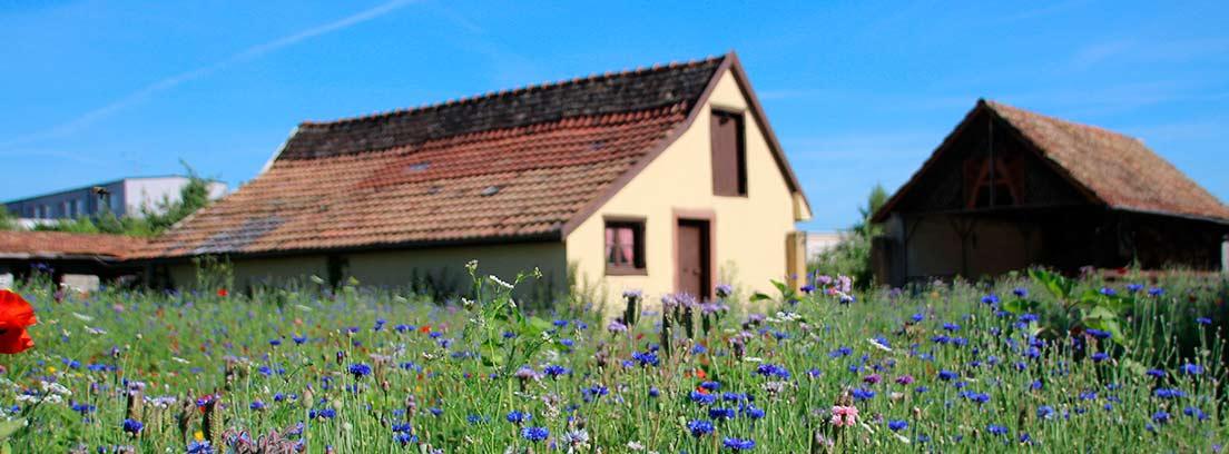 casa de campo levantada en suelo rústico