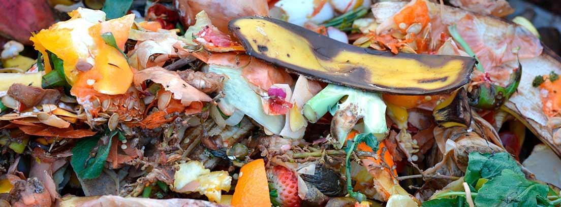 Vegetales y otros ingredientes para hacer compost casero