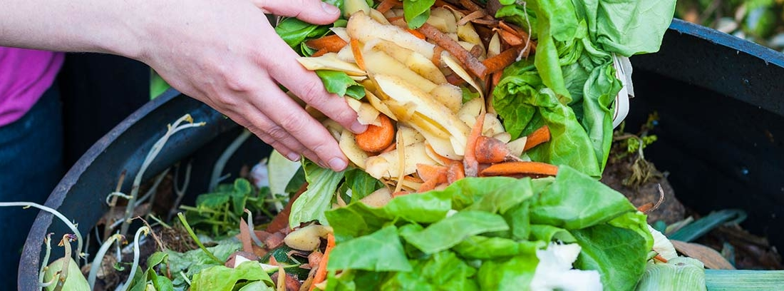 Manos echando vegetales en un cubo de compost