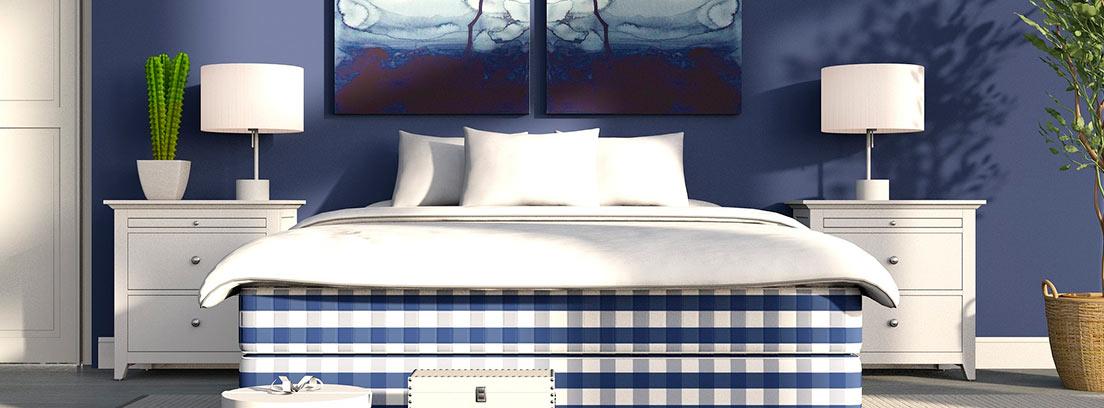 Ficus situado en una habitación azul