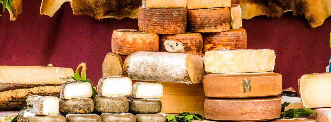 Distintos tipos de queso apilados
