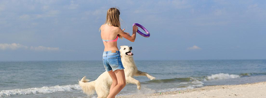 Consejos para ir con tu perro a la playa