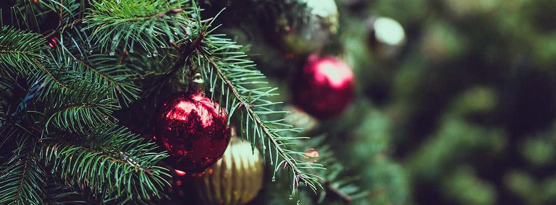 Ramas de árbol de Navidad decorada con bolas de colores
