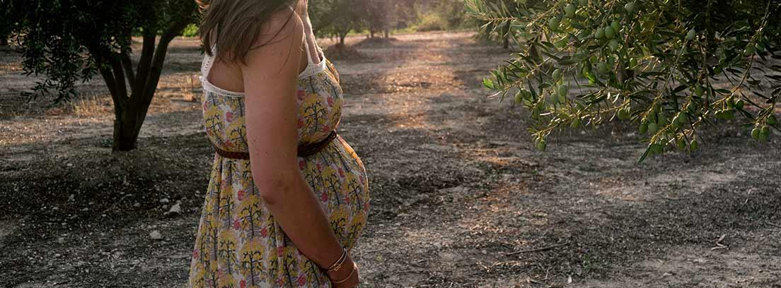 Mujer embarazada entre árboles y con vestido largo y de tirantes corte imperio.