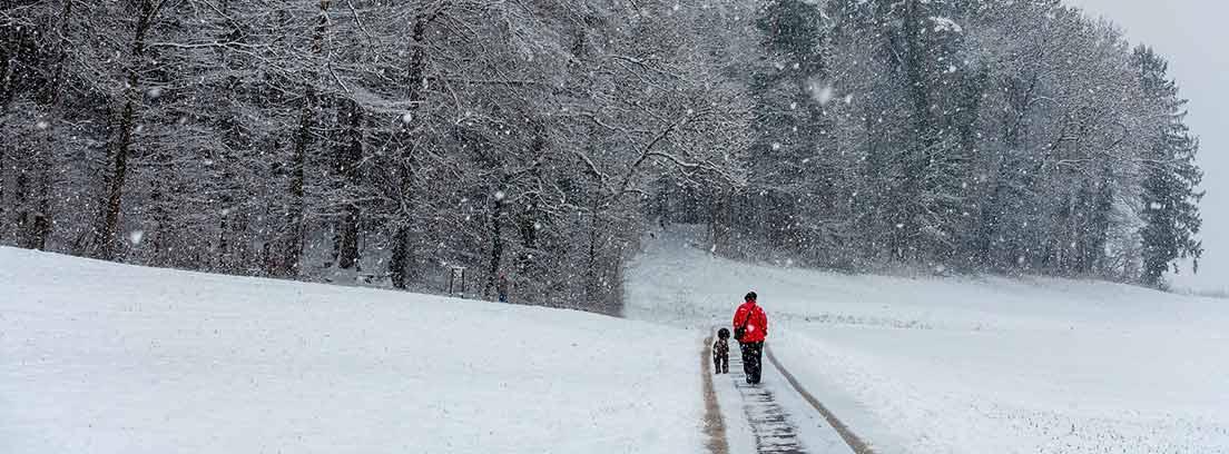 Hombre paseando con su perro por la nieve