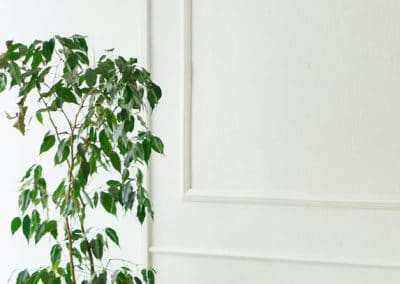 Pared interior de salón con molduras de yeso en la pared