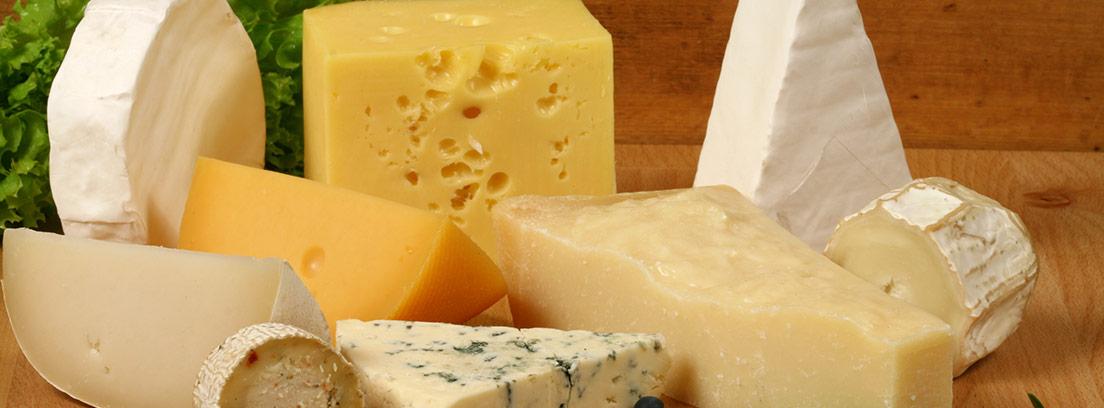 Distintos tipos de queso sobre una bandeja