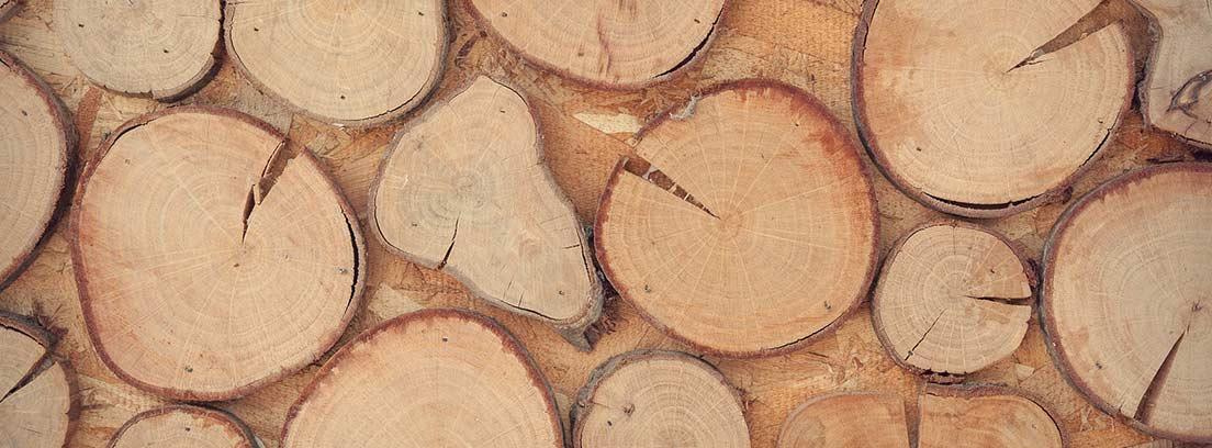 Troncos de madera de distinto tamaño y forma.