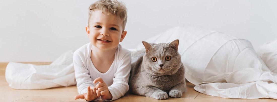 niño pequeño tumbado en el suelo junto a un gato gris.