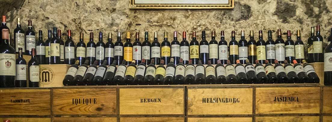 Varias botellas de vino tinto conservadas en una bodega