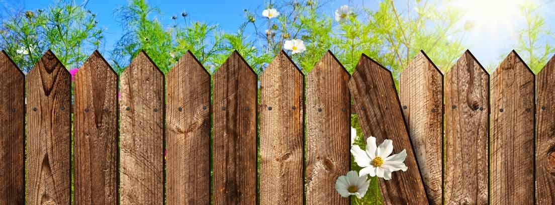 Ilustración de un vallado de madera en un jardín