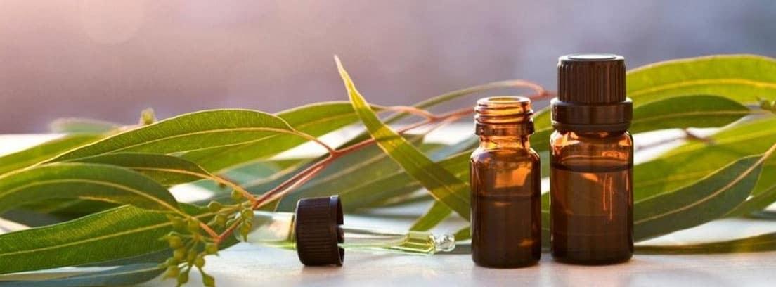 Botes de aceites esenciales