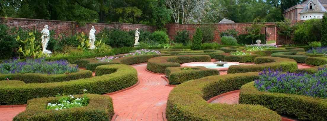 Setos de jardín con diferentes formas