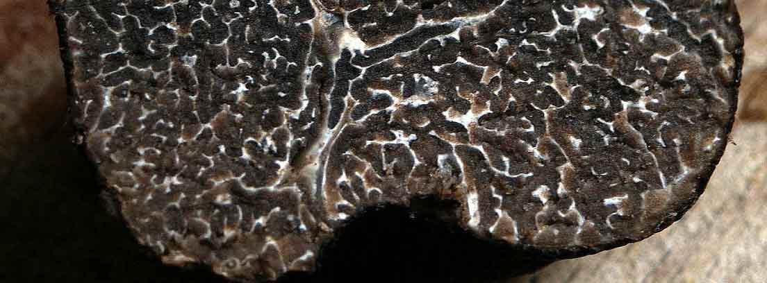 primer plano de una trufa negra abierta por la mitad