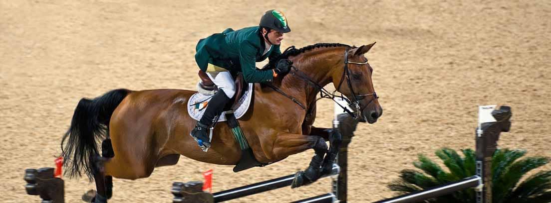 El jinete Denis Lynch a los lomos de un caballo Hannoveriano