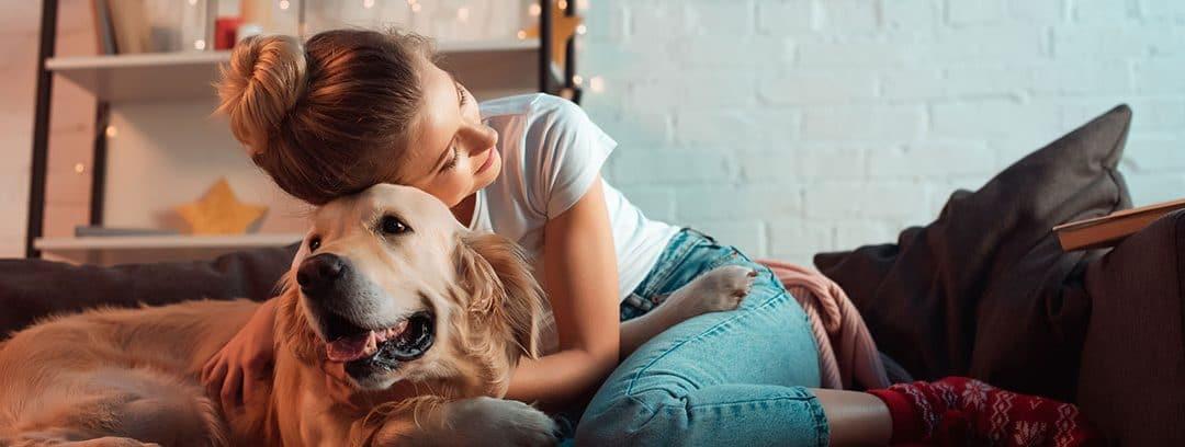 Collares conectados: una ayuda eficaz para cuidar a tu mascota