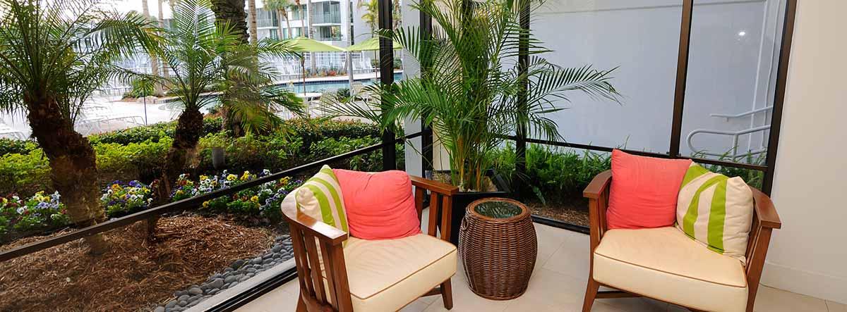 Varias palmeras colocadas en un jardín