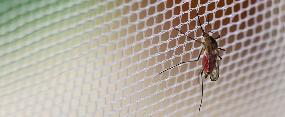 Cómo colocar una mosquitera en distintos tipos de puertas