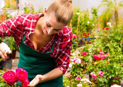 Mujer rociando insecticida para erradicar una plaga de cochinillas