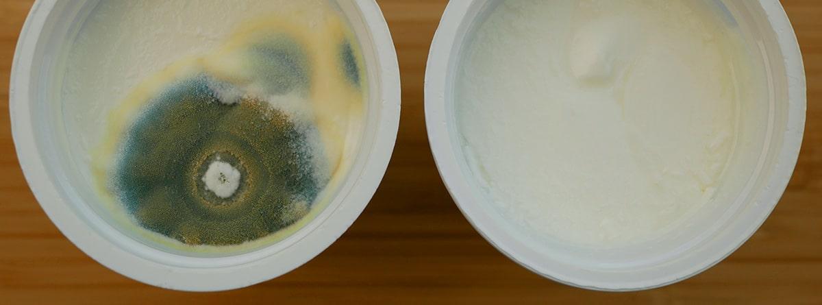 Yogurt con moho