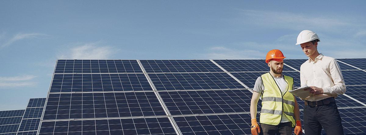 Operarios instalando varios paneles solares en el campo